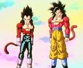 dbz - dragon-ball photo