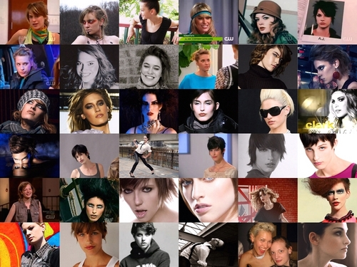 ANTM collage