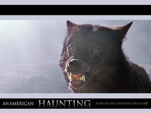 An American Haunting দেওয়ালপত্র