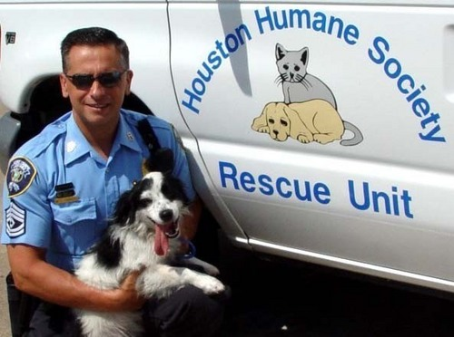 Against Animal Cruelty! wallpaper entitled Animal Cops