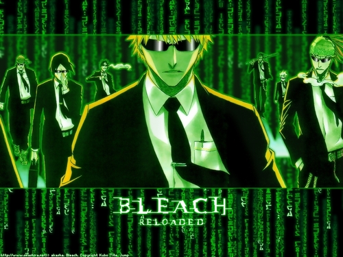Bleach: Matrix Style
