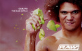 Carlito - professional-wrestling wallpaper
