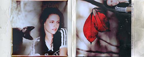 Кристен Стюарт