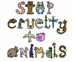 Against Animal Cruelty! wallpaper entitled Stop Animal Cruelty