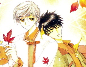 Cardcaptor Sakura wallpaper entitled Touya and Yue/Yukito