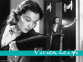 Vivien Leigh - vivien-leigh wallpaper