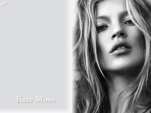Kate Moss wallpaper with a portrait titled kate moss wallpaper