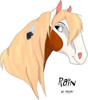《小马王 》 壁纸 titled rain