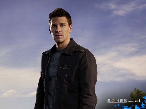 Seeley Booth wallpaper called Booth