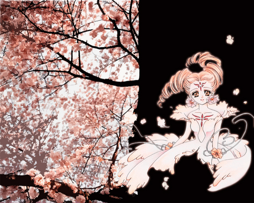 Cardcaptor Sakura پیپر وال possibly with a live oak called Clow cards