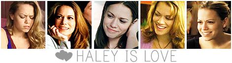Haley banner