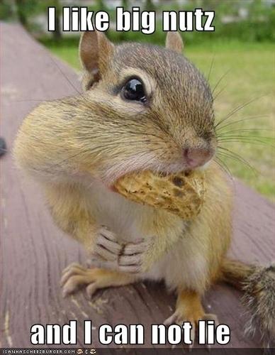 I like big nuts!