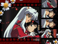 InuYasha and Kagome - inuyasha-and-ranma-1-2 wallpaper