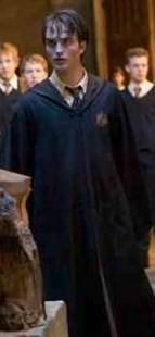 Robert (Cedric)♥