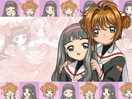 Sakura Cardcaptors wallpaper with animê entitled Sakura and Tomoyo