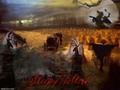 Sleepy hollow wallpaper  - sleepy-hollow wallpaper