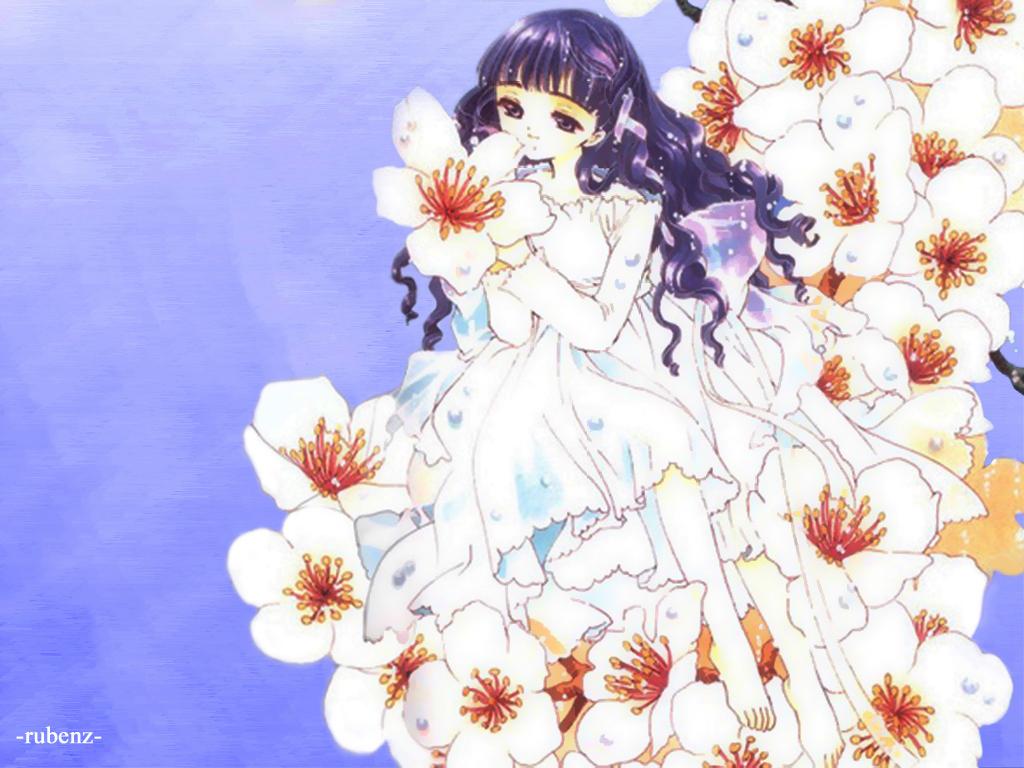 Tomoyo  Cardcaptor Sakura Wallpaper 4696858  Fanpop