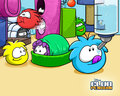 puffles - club-penguin wallpaper