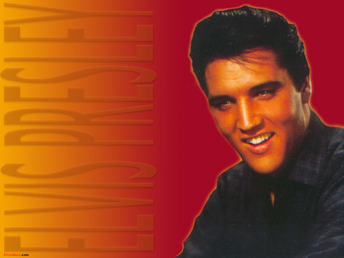 Elvis Presley wallpaper with a portrait entitled Elvis