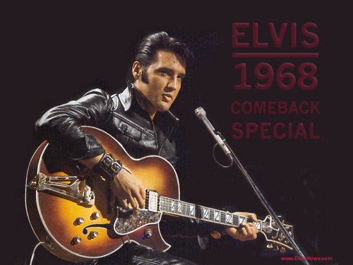elvis presley fondo de pantalla containing a guitarist and a concierto titled Elvis