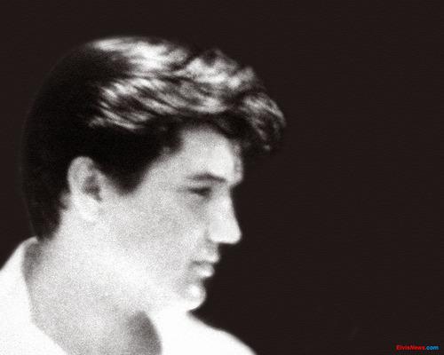 elvis presley fondo de pantalla possibly containing a concierto and a portrait entitled Elvis