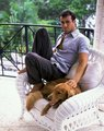 Enrique Iglesias and his Dogs - enrique-iglesias photo