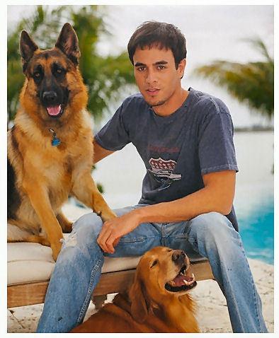 Enrique's Dogs