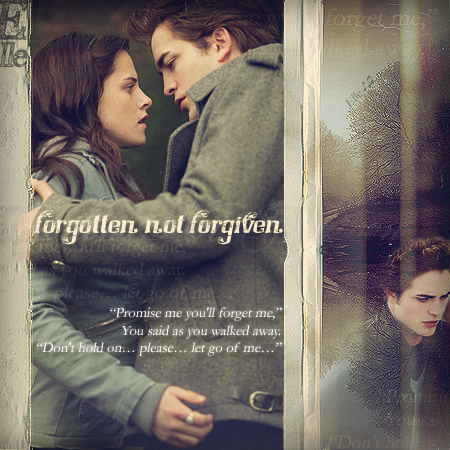 Forgotten Not Forgiven - twilight-series Fan Art