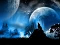 Moon - moon photo