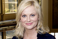 Parks and Recreation - parks-and-recreation photo