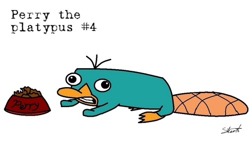 Perry eating