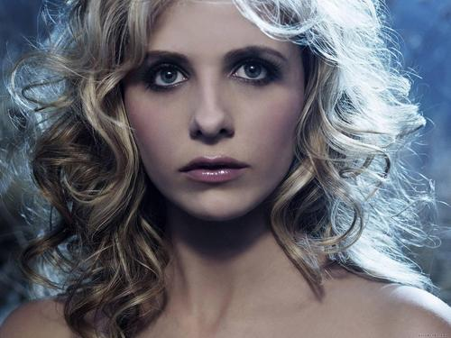 Sarah Michelle Gellar wallpaper probably containing a portrait titled Sarah Michelle Gellar