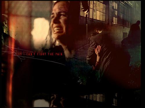 1x18 (Five door Five)