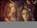 1x19 (Sanctuary)