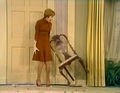 As The Stomach Turns - carol-burnett screencap