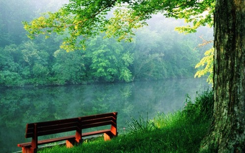 랜덤 바탕화면 containing a park bench titled Beauty of nature