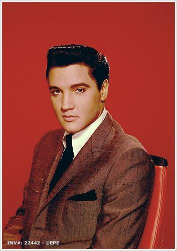 elvis elvis presleys movies photo 4845390 fanpop