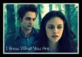 I know what you are.... - twilight-series photo