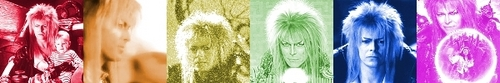 Labyrinth Foto with a bouquet entitled Jareth Color Bar