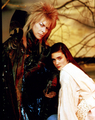 Labyrinth - labyrinth photo