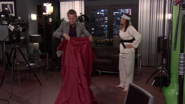 How i met your mother robin resume