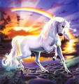 Unicorn and arc en ciel