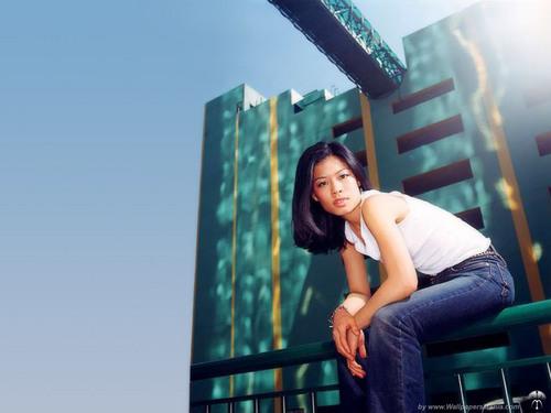 vanessa wallpaper city - photo #5