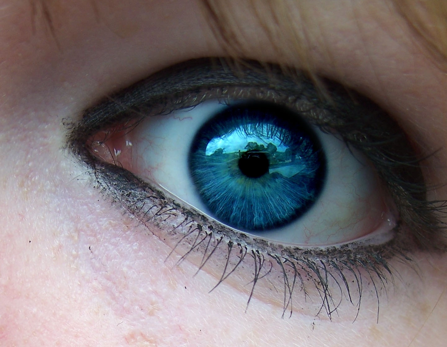 blue eyes:D - Blue Eyes Photo (4873973) - Fanpop