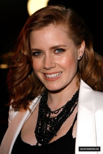 """Amy """"Sunshine Cleaning"""" Los Angeles Premiere"""
