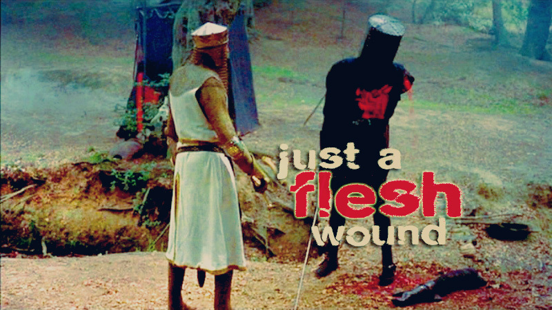 Just-A-Flesh-Wound-monty-python-and-the-holy-grail-4964886-800-450.jpg