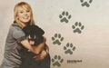 kristen-bell - Kristen - New York Dog Magazine  wallpaper