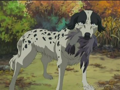 Ginga Densetsu Weed Hintergrund with a dalmatian entitled Beautiful from Weed