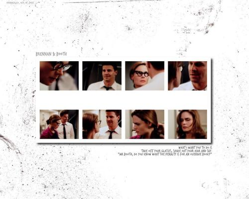 Booth and Bones wallpaper entitled Booth/Brennan