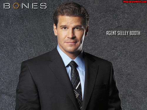 Seeley Booth kertas dinding containing a business suit, a suit, and a two piece called Booth